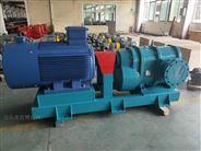 旋转活塞泵油水泵高吸程泵