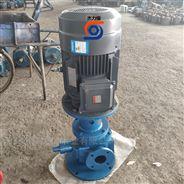 电动立式圆弧齿轮泵