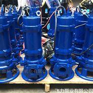 XWQ铰刀切割排污泵 养殖场污水排放泵