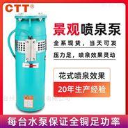 CTT QSP高压潜水泵 喷泉高压泵