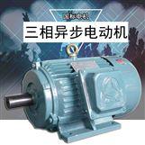 三相异步电动机Y系列铜线电机