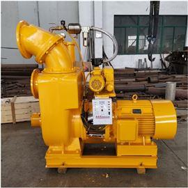 EQZSW大流量无堵塞强力自吸泵